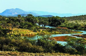 Sarova-Shaba-Safari